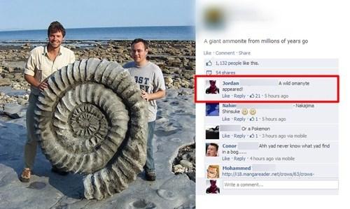 Pokémon,IRL,facebook,fossils,funny