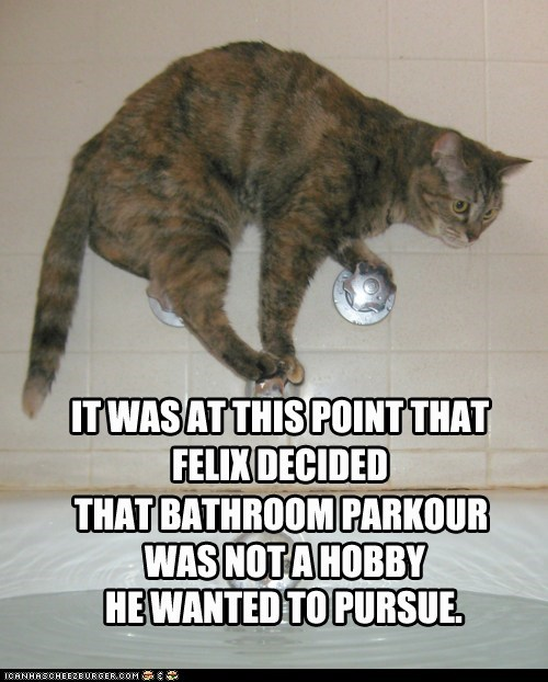 water tub Parkour Cat funny - 7492160768