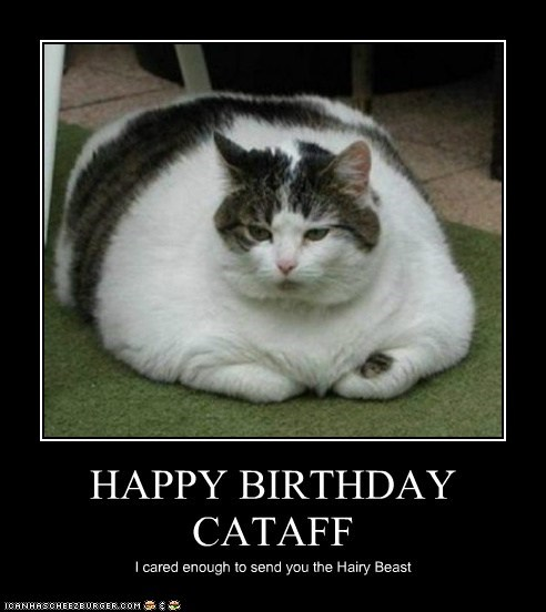 HAPPY BIRTHDAY CATAFF I cared enough to send you the Hairy Beast