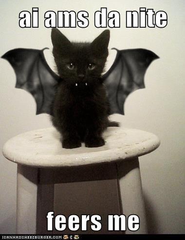 tiny kitten cute - 7492571136