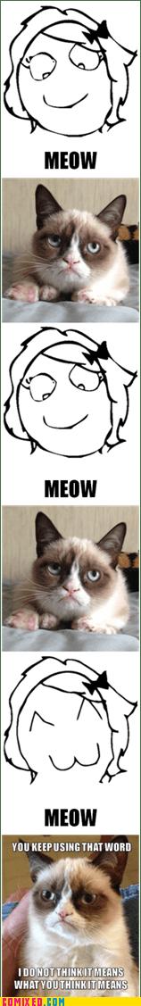 Grumpy Cat meow Cats funny - 7493438464