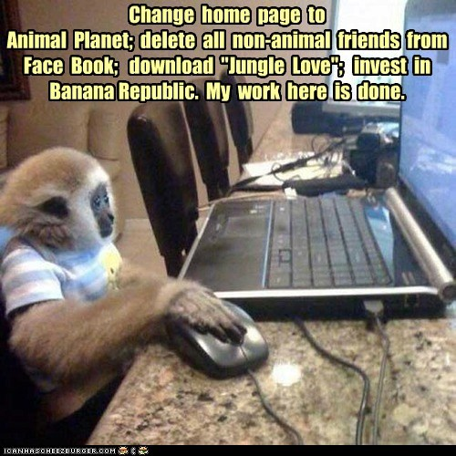"Change home page to Animal Planet; delete all non-animal friends from Face Book; download ""Jungle Love""; invest in Banana Republic. My work here is done."