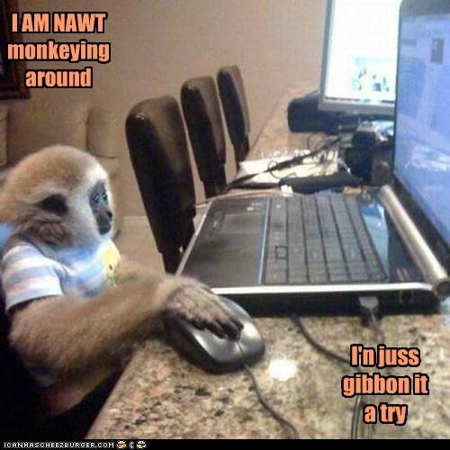 gibbon pun internet funny - 7494061568