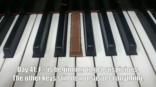 Music piano do not suspect kit kat funny