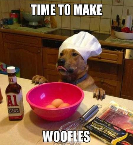dogs breakfast puns funny waffles - 7494249216