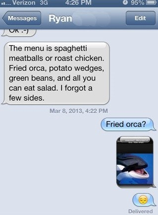 orcas fried food puns funny g rated AutocoWrecks - 7494311936