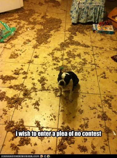 i wish to enter a plea of no contest