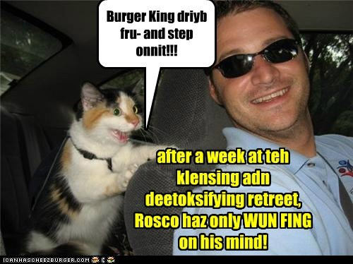 Burger King driyb fru- and step onnit!!! after a week at teh klensing adn deetoksifying retreet, Rosco haz only WUN FING on his mind!
