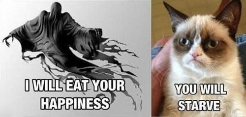 Grumpy Cat,dementors,funny