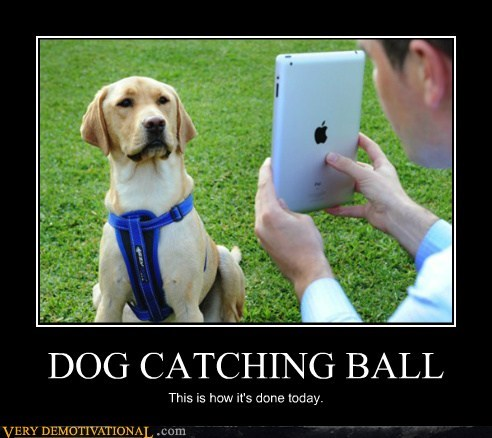 catching ipad ball dogs funny
