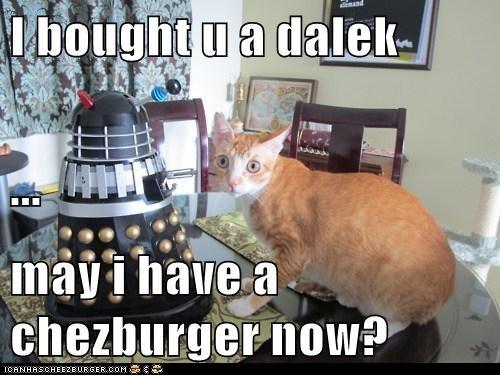 Cheezburger Image 7497380608