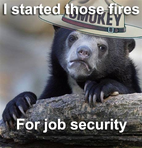 Memes Confession Bear Smokey the Bear funny - 7497745664