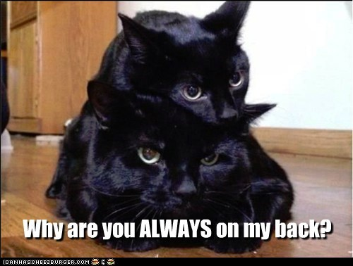 Why are you ALWAYS on my back?