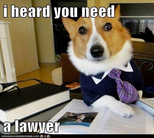 i heard you need  a lawyer