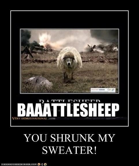 YOU SHRUNK MY SWEATER!