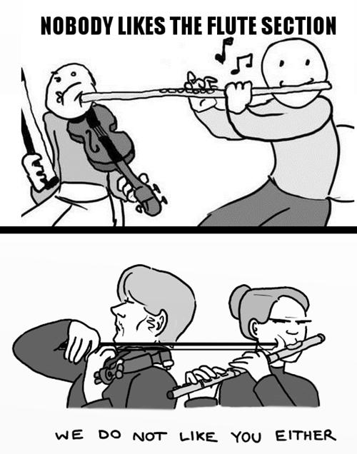Music flute violin funny orchestra - 7505760256