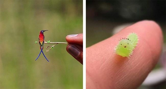 cute tiny little animals