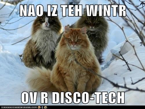 disco,snow,shakespeare