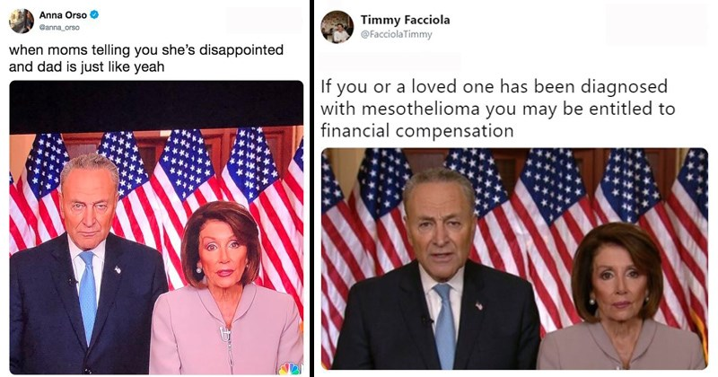 memes about chuck schumer and nancy pelosi