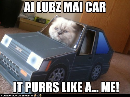 purr,car,vroom vroom,funny