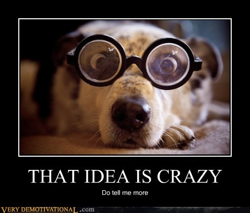 crazy wtf glasses dogs funny - 7514314496
