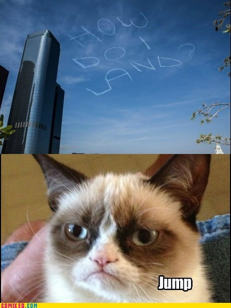 Grumpy Cat,los angeles,how do i land,funny