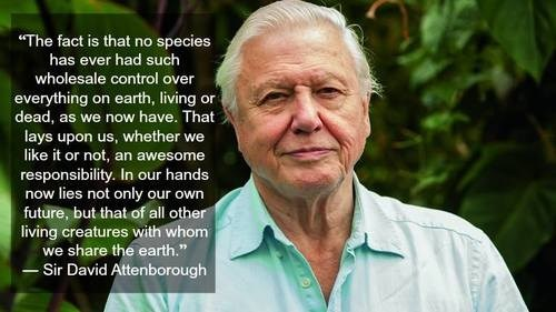 humans Sir David Attenborough science species funny