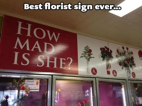 florists signs flowers funny - 7515149312