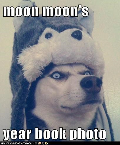 moon moon,hat,funny,year book