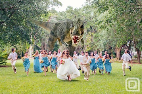 dinposaurs,nerdgasm,wedding,t rex,funny,g rated,win