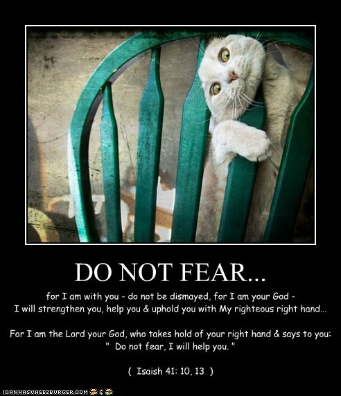 """DO NOT FEAR... for I am with you - do not be dismayed, for I am your God - I will strengthen you, help you & uphold you with My righteous right hand... For I am the Lord your God, who takes hold of your right hand & says to you: """" Do not fear, I will help you. """" ( Isaish 41: 10, 13 )"""