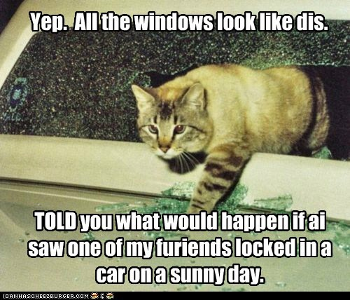 TOLD you what would happen if ai saw one of my furiends locked in a car on a sunny day. Yep. All the windows look like dis.