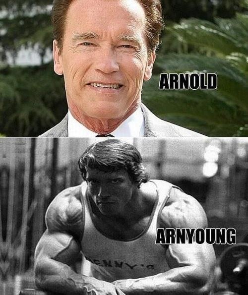 puns,Arnold Schwarzenegger