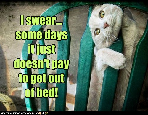 I swear... some days it just doesn't pay to get out of bed!