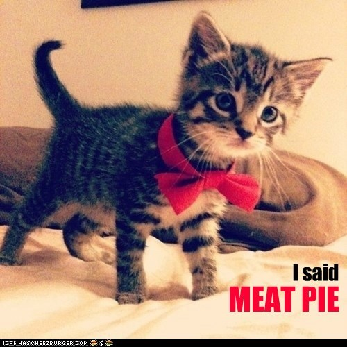bow tie,kitty,food,funny