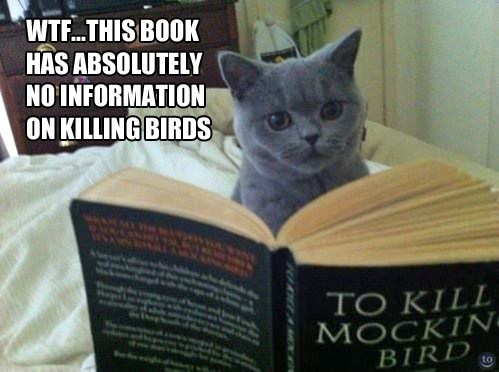 birds,To Kill A Mockingbird,book
