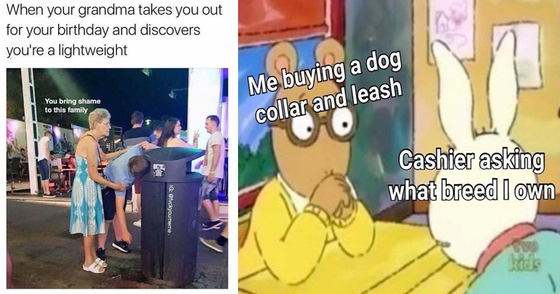 Funny and edgy memes | old woman supporting a man throwing up inside a garbage can: grandma takes out birthday and discovers lightweight bring shame this family. arthur and buster: buying dog collar and leash Cashier asking breed own