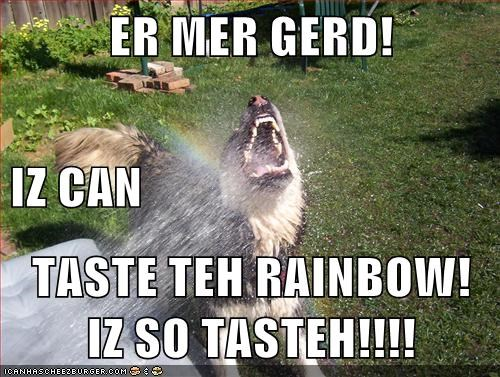 summer time Ermahgerd funny rainbow