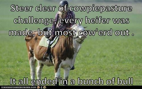Steer clear of cowpiepasture challenge, every heifer was made, but most cow'erd out . It all ended in a bunch of bull