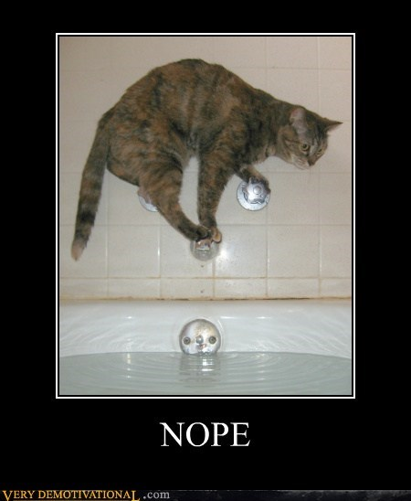 cat water no funny - 7520742144