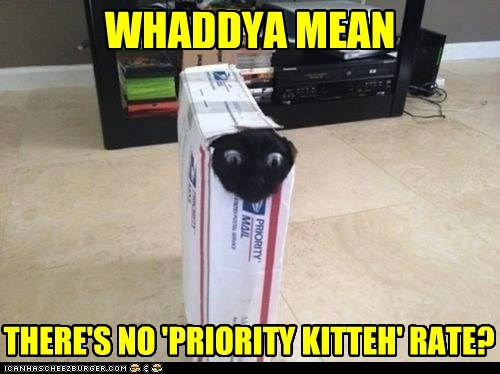 grandma,package,mail,funny,priority