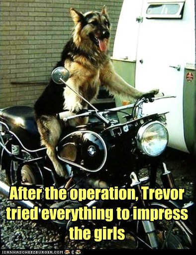 After the operation, Trevor tried everything to impress the girls