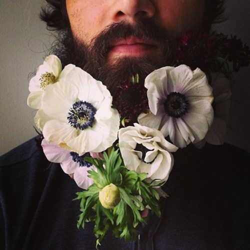 flowers,beards,funny