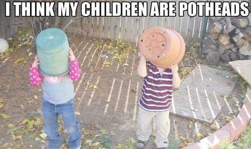 gardening,pot,funny