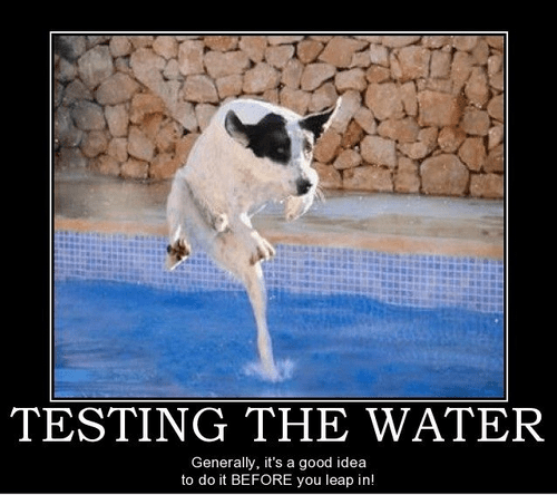water cold test dogs funny - 7522392064