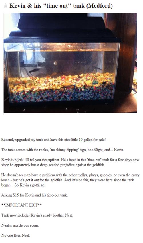 Ad pets aquarium fish tank for sale funny win - 7522459392