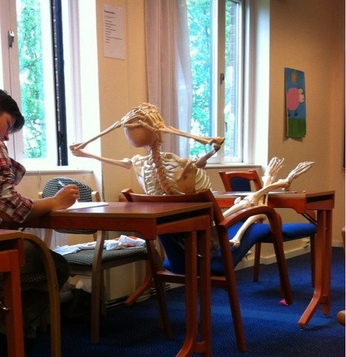 old student skeleton funny school g rated - 7522573056