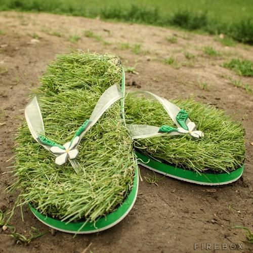 flip flops grass funny - 7522746112