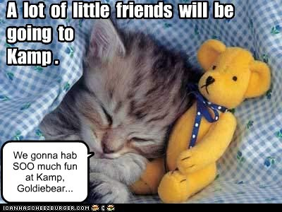 A lot of little friends will be going to Kamp . We gonna hab SOO much fun at Kamp, Goldiebear...