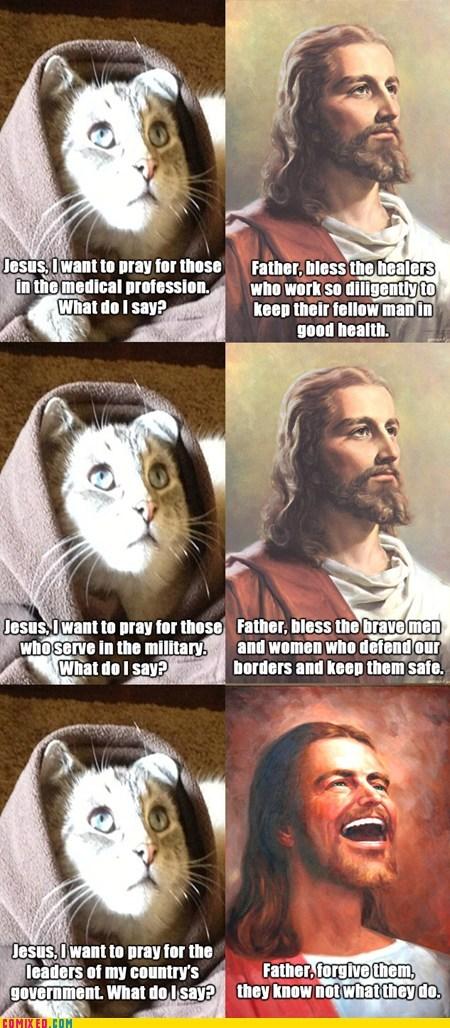 jesus Congress sad but true Cats funny - 7527314944